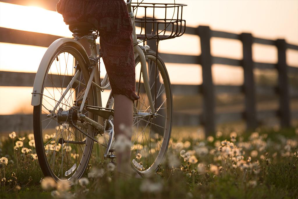 Vélo au port du Canal de Bourgogne